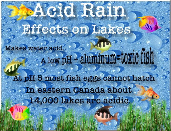 a problem of acid rain in our world The earliest report about acid rain in the united states was from the  napap  looked at the entire problem from a scientific.